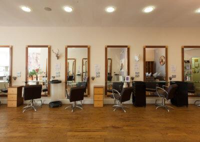 salon-landscape1
