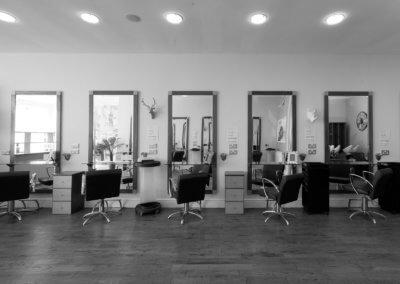 salon-landscape8